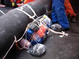 Lifesaving Equipment pack