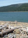 Western States Trail (Robinson Flat)