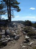 Donner Rim Trail