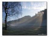 snowfree winterday / Wintertag ohne Schnee
