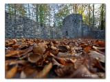 Burgruine / castle ruin