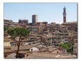 Siena (Tuscany / Toskana / Toscana)