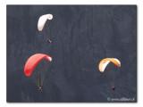 Paragliding (Tandemflights)