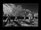 Korean War Memorial Infrared