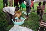 Rural Aquaculture Promotion - Small Scale fish culture