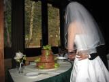 Reception_Wedding_Cake_Cutting.jpg