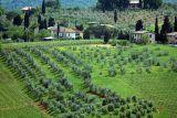 Siena to Volterra