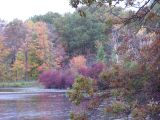 muted fall color