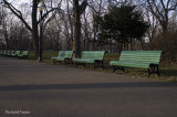 Le parc Lafontaine et ses beautés