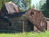 Collapsed barn near Nimpo Lake, B.C