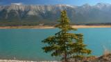 Preachers Point Abraham Lake.jpg