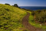 GALLERY: Palos Verdes Coastline