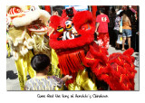 Lions at Honolulu Chinatown