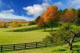96 Pastureland and Niagara Escarpment 3.jpg