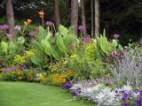 Summer Garden ~ August 21st