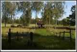PICT9461.jpg  (tramp cabin)