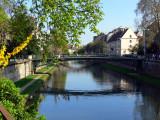 Spring in Strasbourg