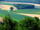 Le Bastberg -Alsace