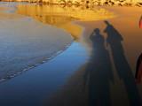 shadows on the beach.
