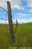 Just Another Fence Line
