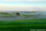Foggy Fairway