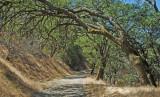 Briones hiking area, Martinez