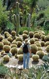 Son, John, also a photographer, admiring cacti.