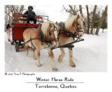 Winter Horse Ride ...