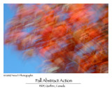 Abstrait d'automne ...