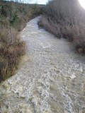 Merse a valle Montepescini.JPG