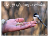 The Gift Of Giving Is Priceless