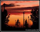 Sunset along the path