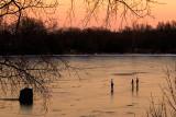 Elkhorn Lake  ~  December 10  [6]