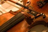 Violin  [5]