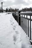 Mill Pond Bridge  ~  February 26