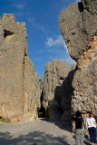 Needles Highway (and Tunnel)