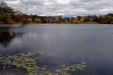 Cloudy Fall Day on the Mill Pond  ~  September 25  [9]