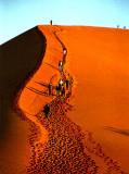 Dune 45 (38)