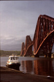 Forth Bridge (3)