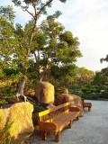 Morikami Gardens bench