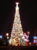Epcot tree in full glory