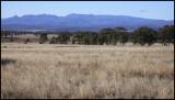 Kaputar Range NSW