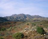 Southern Flinder's Ranges