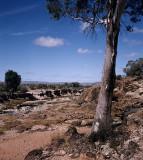 Outback Waterhole