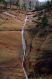 Zion NP 2004