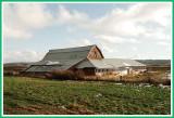 Weathered old barn.