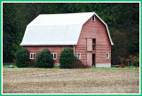 Small barn with classic shape.