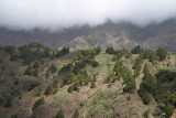 National park La Caldera de Taburiente