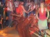 disco_2007