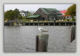 Roanoke Island 025